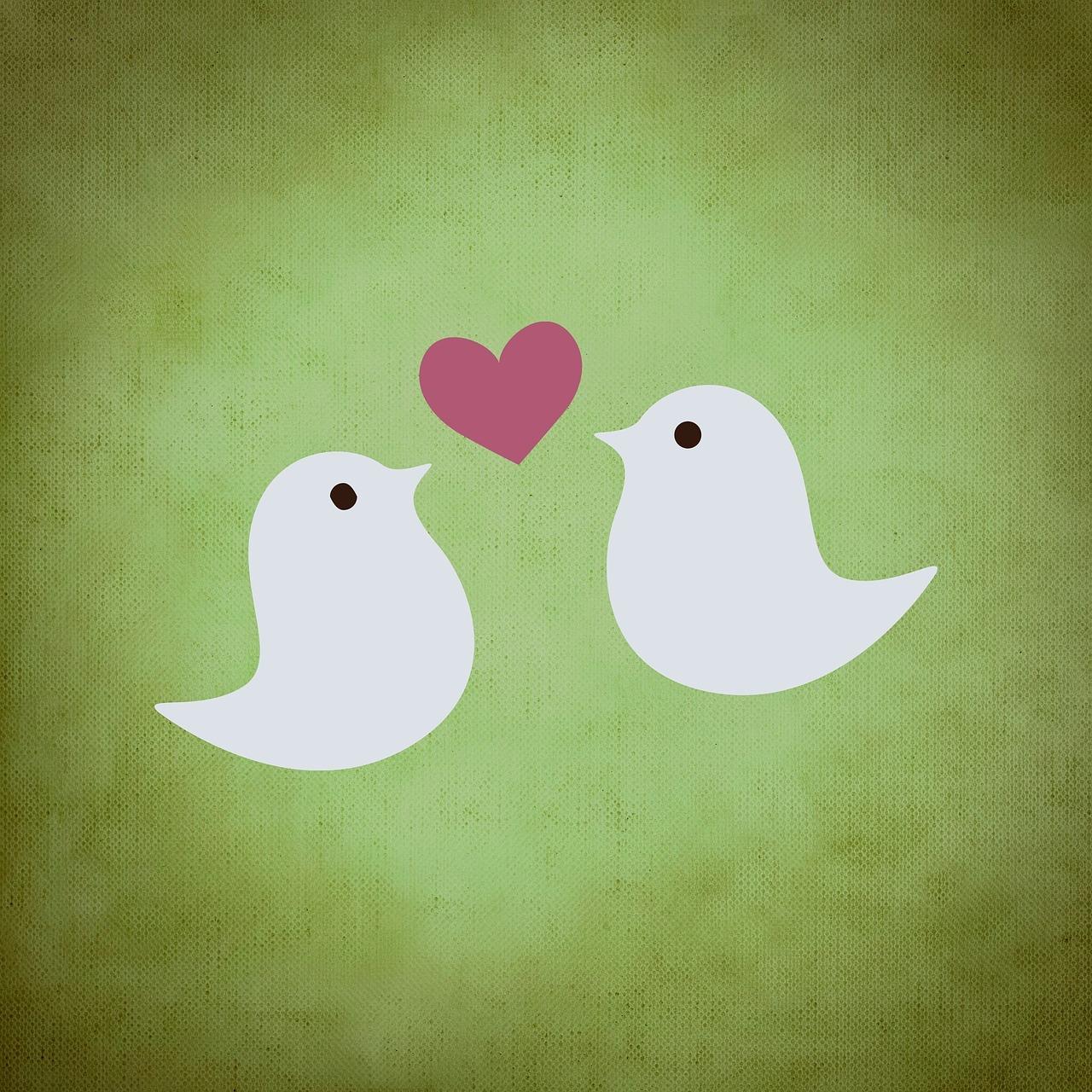 Bird Kisses